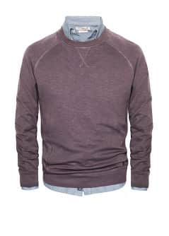 Sweat-shirt coton flammé